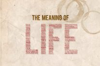 What does the meaning of life really mean?